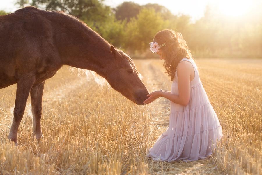 Fotos mit Pferden und generell Tieren sind bei mir möglich. Desweiteren Portraitbilder, Hochzeitsfotos und Workshops.