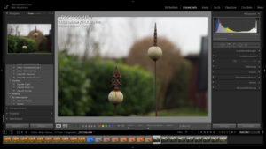 Entwicklungsmodul in Lightroom