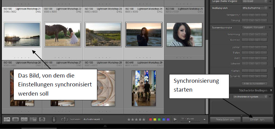 Synchronisieren in Lightroom
